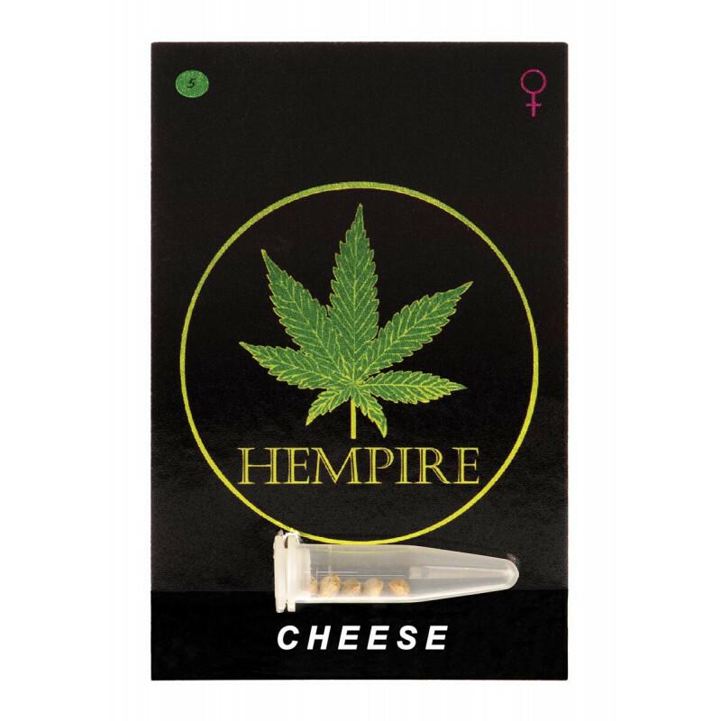 Hempire Seeds Cheese 5 Pcs (Fem)