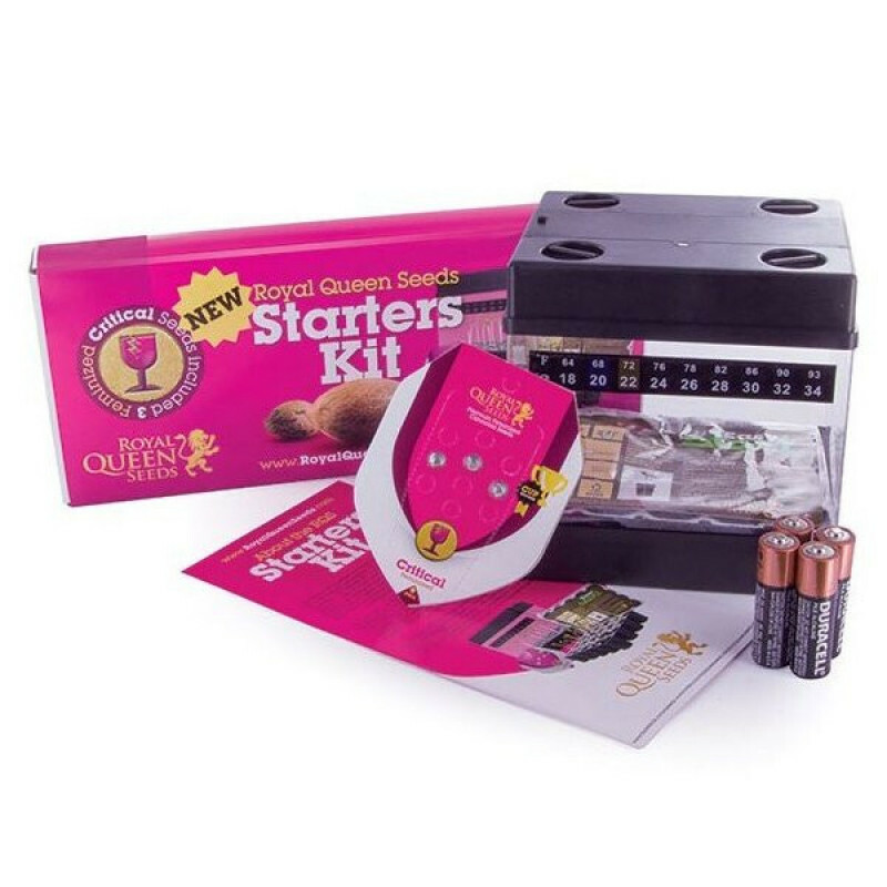 R.Q.S. Starters Kit - Feminized