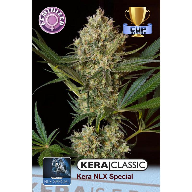 Kera Seeds Nlx Special 5 Pcs (Fem)