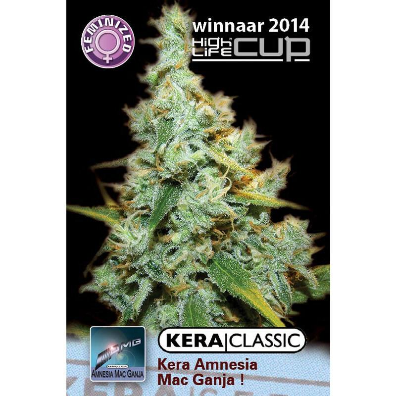 Kera Seeds Amnesia Mac Ganja 10 Pcs (Fem)