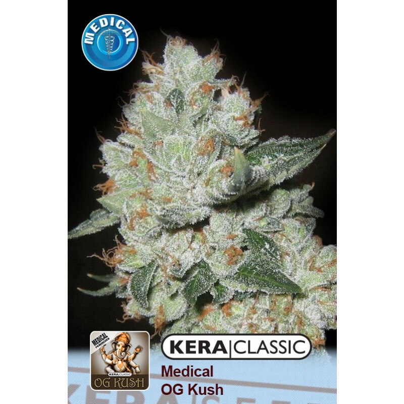 Kera Seeds Medical Og Kush 5 Pcs (Fem)