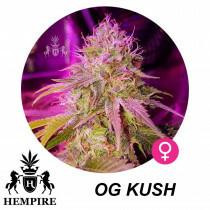 Hempire Seeds Og Kush 5 Pcs (Fem)