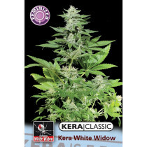 Kera Seeds White Widow 5 Pcs (Fem)