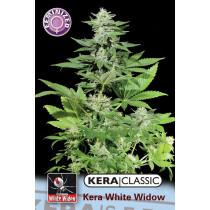Kera Seeds White Widow 10 Pcs (Fem)