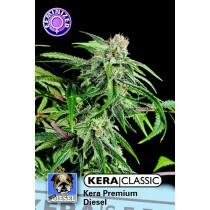 Kera Seeds Premium Diesel 10 Pcs (Fem)