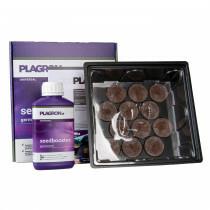 Plagron Seedbox 12 Pcs