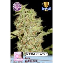 Kera Seeds Bubblegum 5 Pcs (Fem)