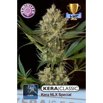 Kera Seeds Nlx Special 1 Pc (Fem)