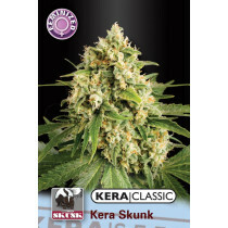 Kera Seeds Kera Skunk 1 Pc (Fem)