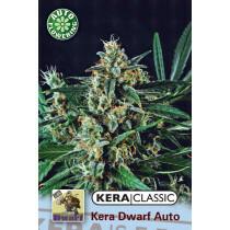 Kera Seeds Kera Dwarf 1 Pc (Auto)