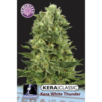 Kera Seeds White Thunder 5Pcs (Fem)