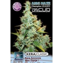 Kera Seeds Medical Amg Haze 5 Pcs (Fem)