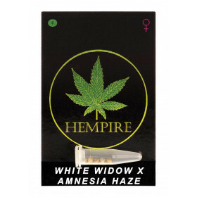 Hempire Seeds White Widow X Amnesia Haze 5 Pcs (Fem)