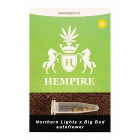 Hempire Seeds Northern Lights X Big Bud 5 Pcs (Auto)