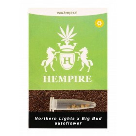 Hempire Seeds Northern Lights X Big Bud 5 Pcs (Auto)
