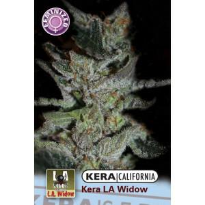 Kera California La Widow 1 Pc (Fem)