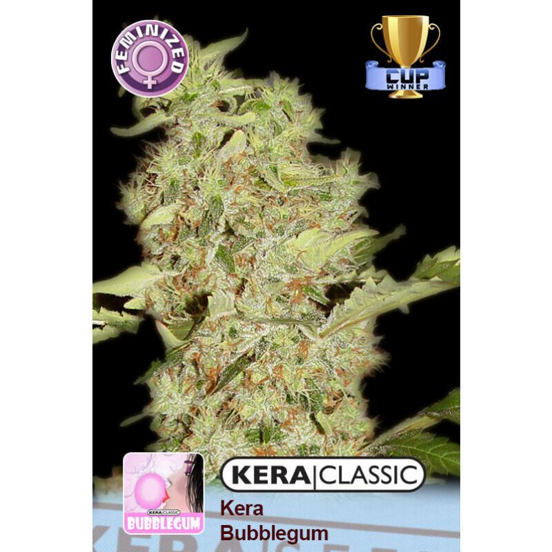 Kera Seeds Bubblegum 3 Pcs (Fem)