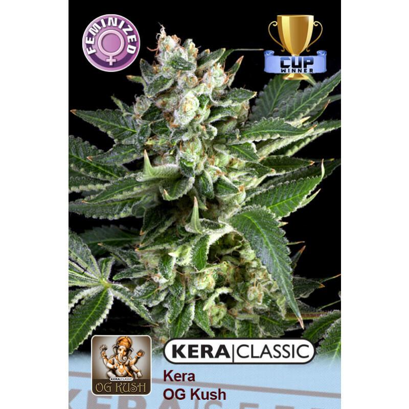 Kera Seeds Og Kush 10 Pcs (Fem)