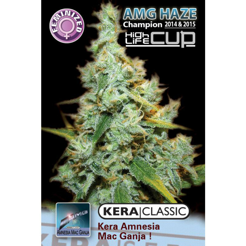 Kera Seeds Medical Amg Haze 5 Pcs (Fem)