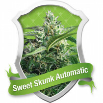 R.Q.S. Sweet Skunk (Auto) (3 Pcs)