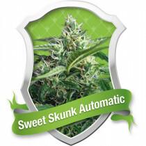 R.Q.S. Sweet Skunk (Auto) (1 Pc)