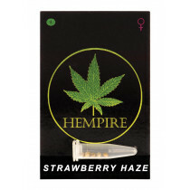 Hempire Seeds Strawberry Haze 5 Pcs (Fem)