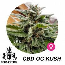 Hempire Seeds Cbd Og Kush  10%Thc - 10%Cbd 5 Pcs (Fem)