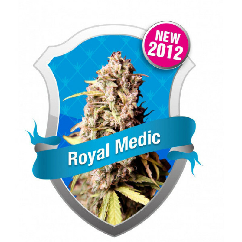 R.Q.S. Royal Medic (Fem)(1 Pcs)