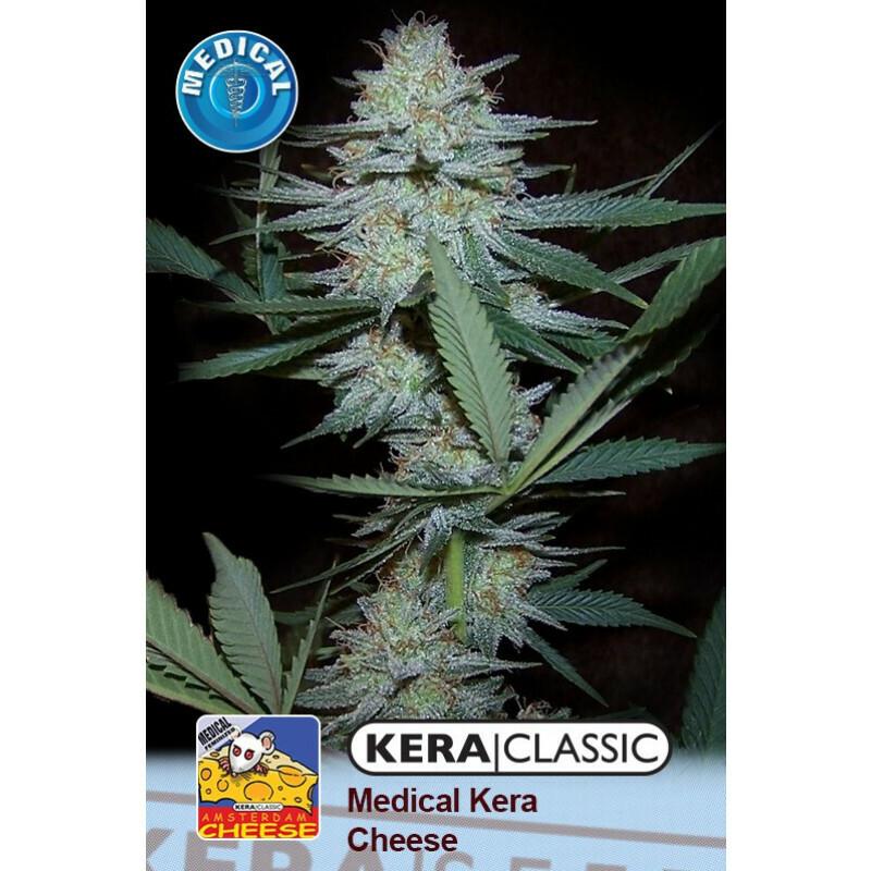 Kera Seeds Medical Cheese 10 Pcs (Fem)