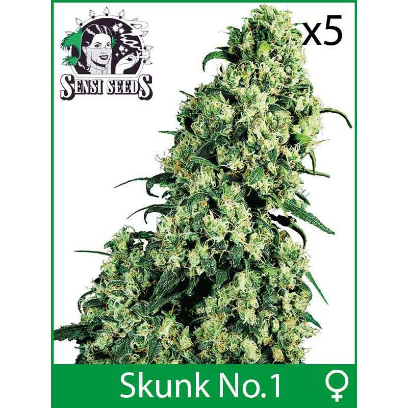 Sensi Seeds Skunk No 1 (Fem) (5 Pcs)