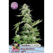 Kera Seeds Northern Light 10 Pcs (Fem)