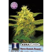 Kera Seeds Dutch Power 1 Pc (Fem)