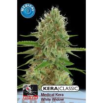 Kera Seeds Medical White Widow 5 Pcs (Fem)