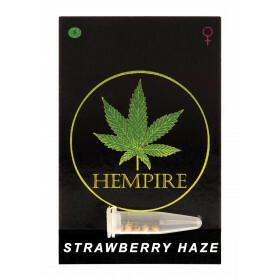 Hempire Seeds Strawberry Haze 5 Pcs (Fem)