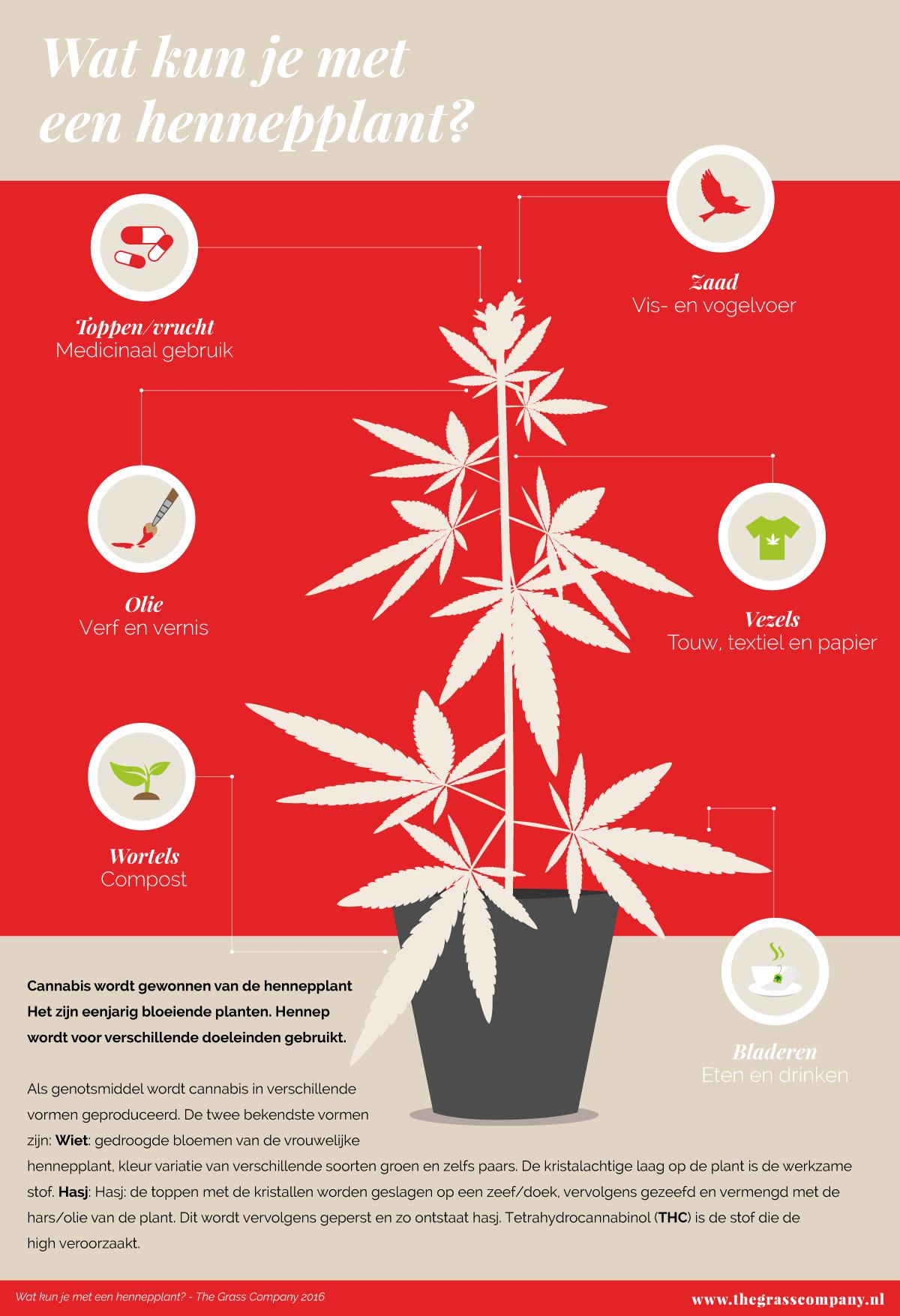 Hennep is meer dan alléén cannabis